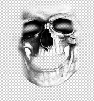 Halloween Skeleton Selfie- Photoshop Tutorial (3/6)
